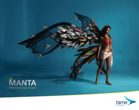 FlyManta1